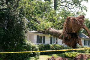 Hurricane Categories Will Affect Your Roof